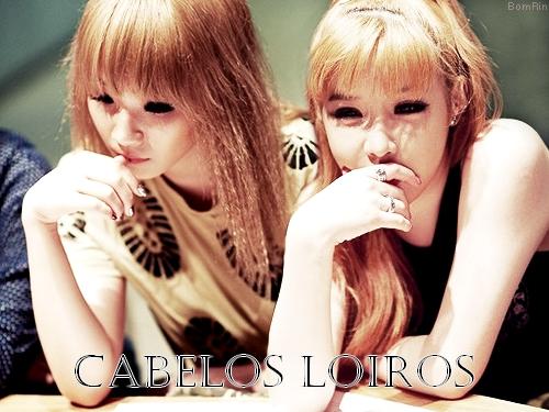 cab8 - Loiros Claros e Claríssimos